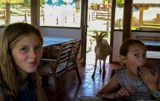vacaciones diferentes con niños