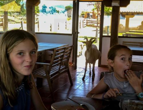 Vacaciones diferentes con niños: ¿cómo y cuándo organizarlas?