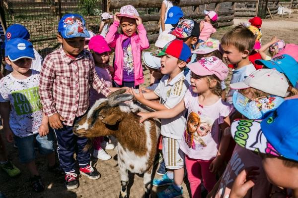 experiencias con niños en Madrid